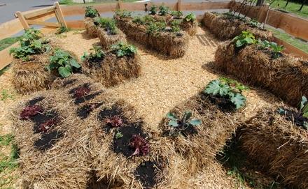 Szalmabála kertészkedés előnyei