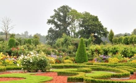 Ásó, kapa, kertészkesztyű - így állj neki a tavaszi kertészkedésnek!
