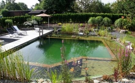 Természetes úszómedence építése