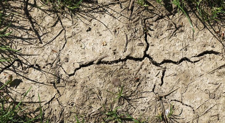 Mi az agyagos talaj?