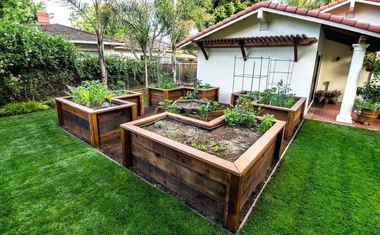 Magas ágyásban termeszthető növények